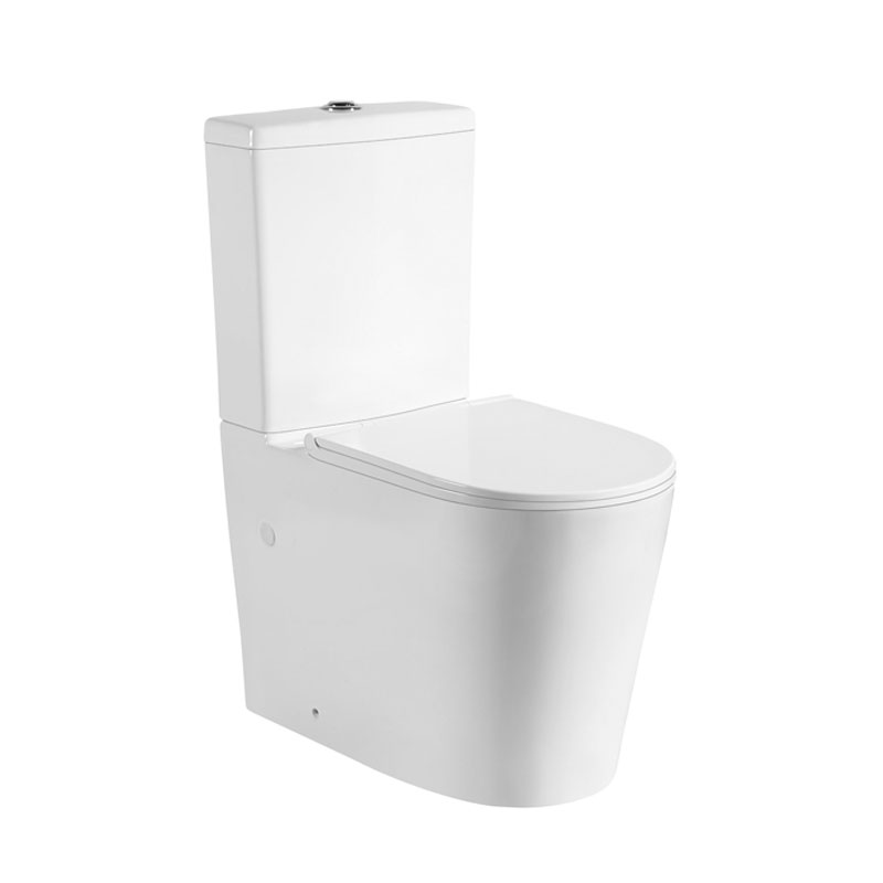 Avis Back to Wall Toilet Suite (Rimless)