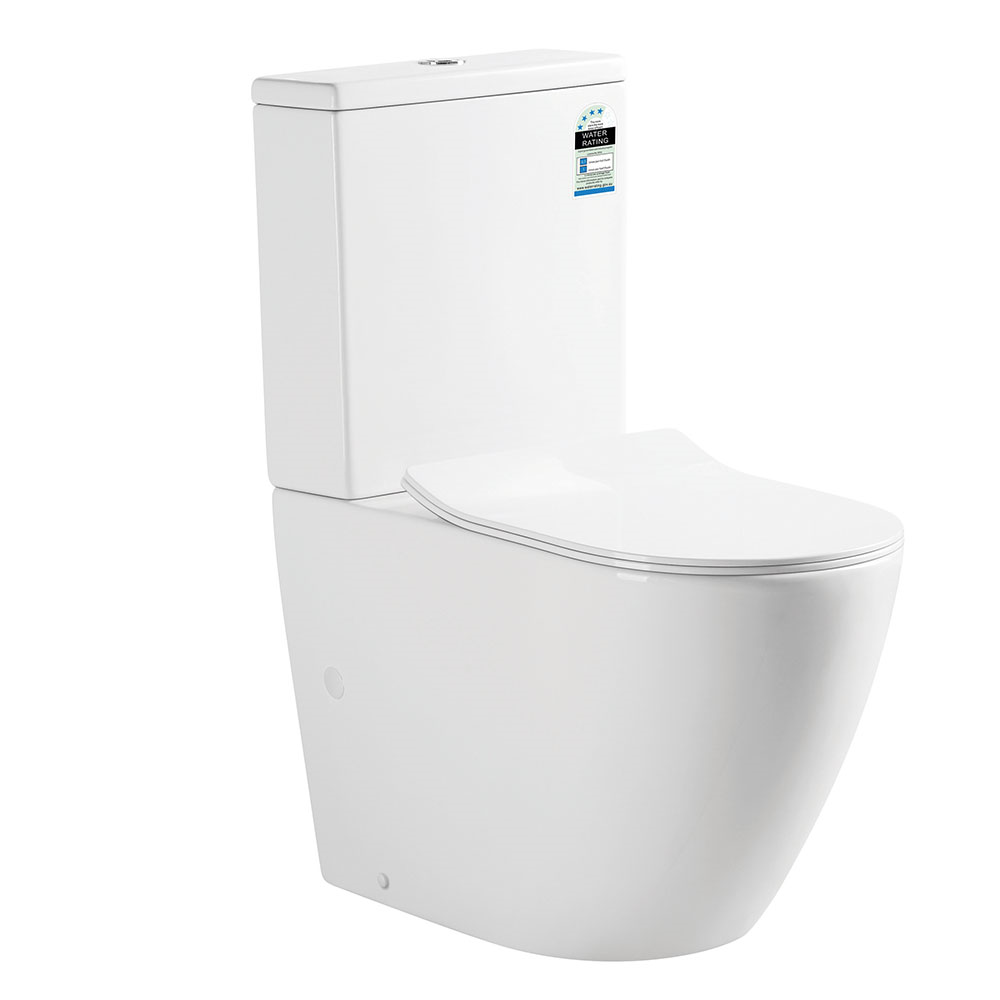 Hani Back To Wall Toilet Suite-Rimless