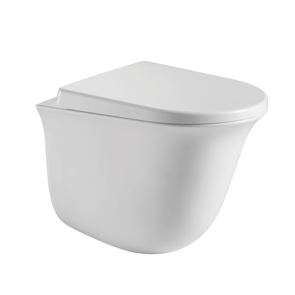 Tio Wall Hung Pan-Rimless